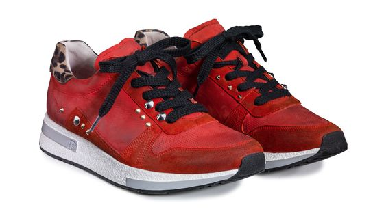 newest 2550f 373a2 Sneaker in Rot mit Leo-Muster und Details - Paul Green
